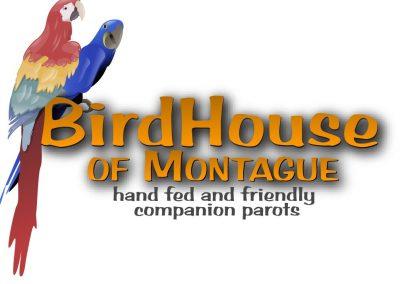 BirdHouse of Montague